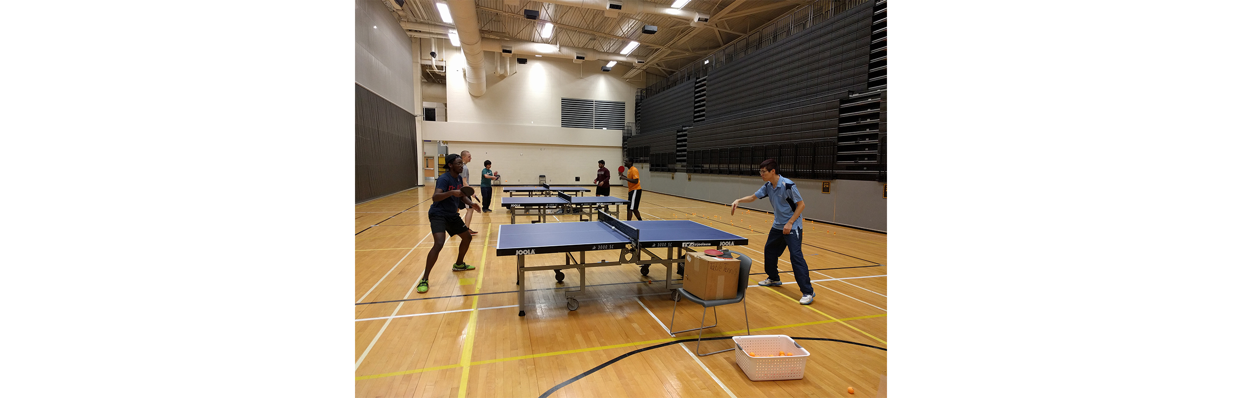 KSU Table Tennis